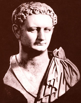 domitian Domitians Vine Edict: The Story of the First Wine Law