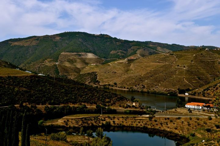 Demand Truth in Labeling: Port and Douro Valley Wines