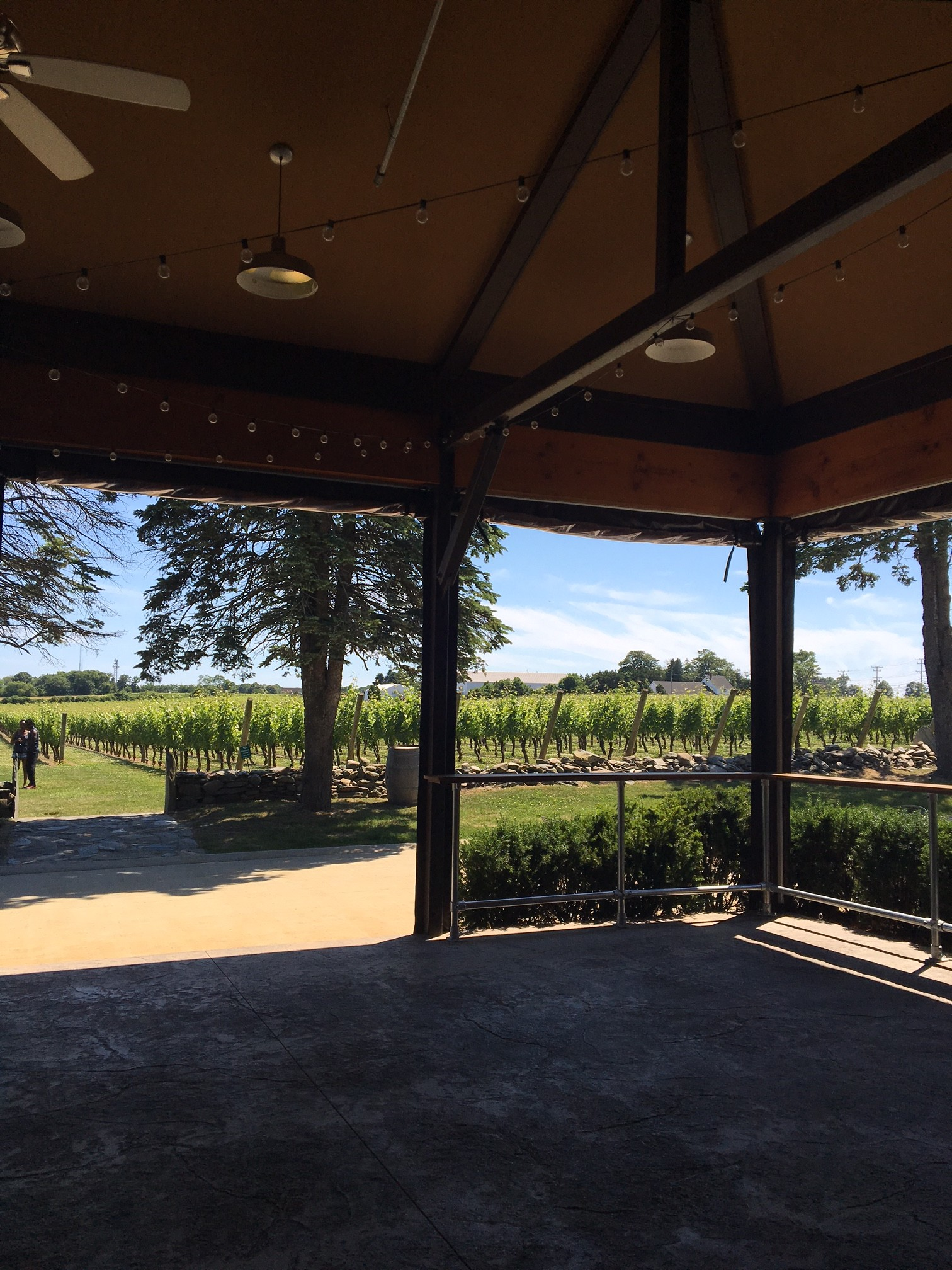 Newport Vineyards Middletown Rhode Island