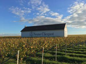 reims wine law program france champagne veuve cliquot